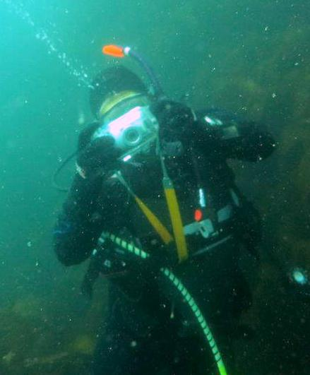 Take great pictures while scuba diving with the padi underwater photography scuba diving course